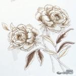 greflo-5996-