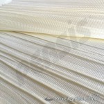 crunchy_zebra_persis_725_4