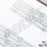 ringalin_zebra_persis_14_