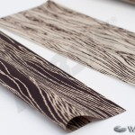 wood287_persis3